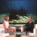 Hãy cùng tìm hiểu xem những điều Taylor Swift sợ hãi nhất là gì nhé
